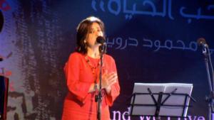 Damas-2008